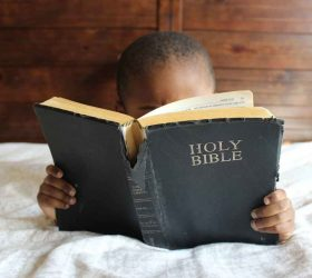 Kids Online Bible Camp